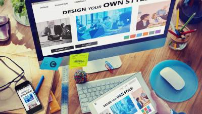 What a Professional Web Designer Should do You